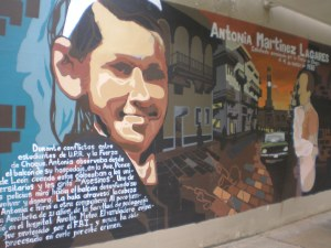 This mural commemorates the death of Antonia Martinez, who was shot by a police officer on March 4, 1970 during a student strike at the University of Puerto Rico in Rio Piedras. She is an example of the repercussions of police intervention in university affairs.