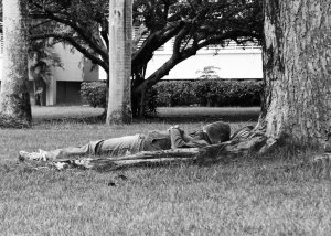 "Julian Lopez, 19, taking a nap on the nearest tree that had shade. A common thing suggested by many students and not just Julian is to find a place in the university to make a ""nap room"". ""Best invention you'll need here? Pitch black air-conditioned rooms with several beds for rent."""